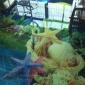 供��家具�l浴玻璃印花�C玻璃打印�C免�M打�印�18566699437�K�理